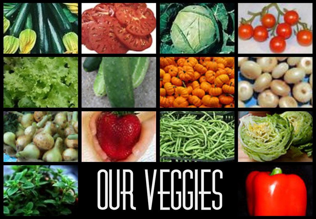 Vegetable gardens nikitaland - Checklist for your vegetable garden in august ...