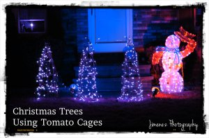 Christmas Trees Using Tomato Cages