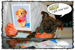 Bella Got Christmas Card From Grandma