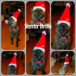 Santa Bella Collage