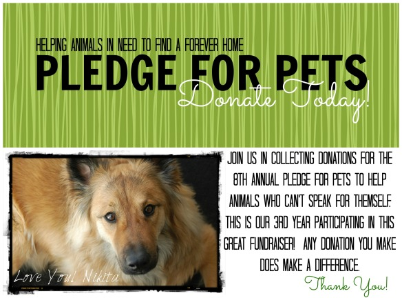 Pledge For Pets Green Box