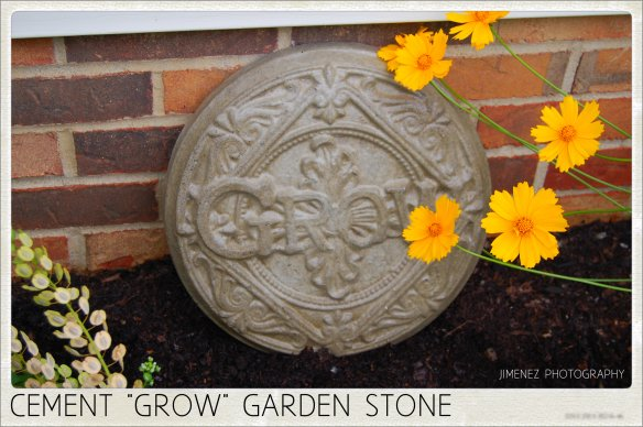 CEMENT GROW STEPPING STONE