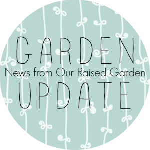 GARDEN UPDATE BUTTON