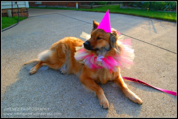 NIKITA ON HER BIRTHDAY