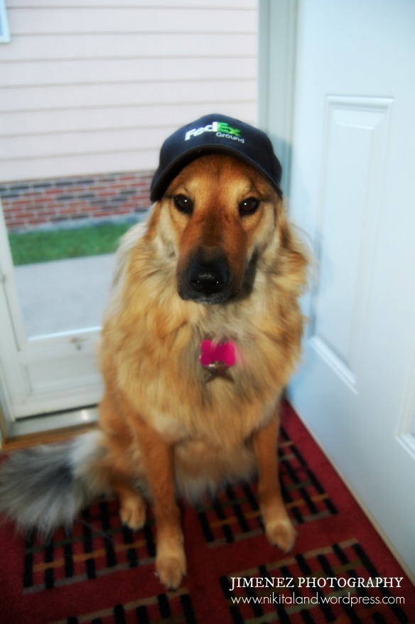 NIKITA WITH FEDEX HAT