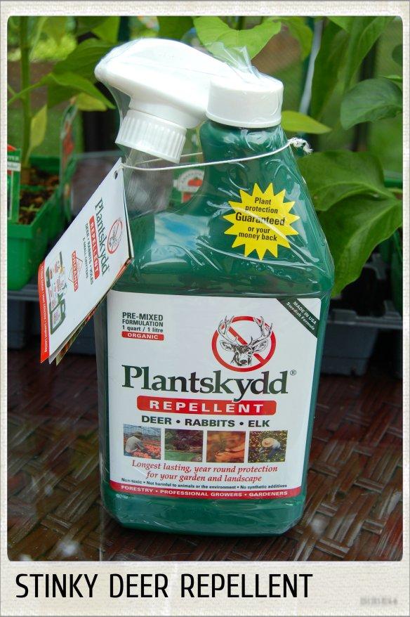 PLANTSKYDD