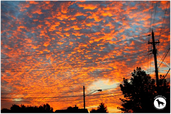 BEAUTIFUL MORNING SKY 8-10-13