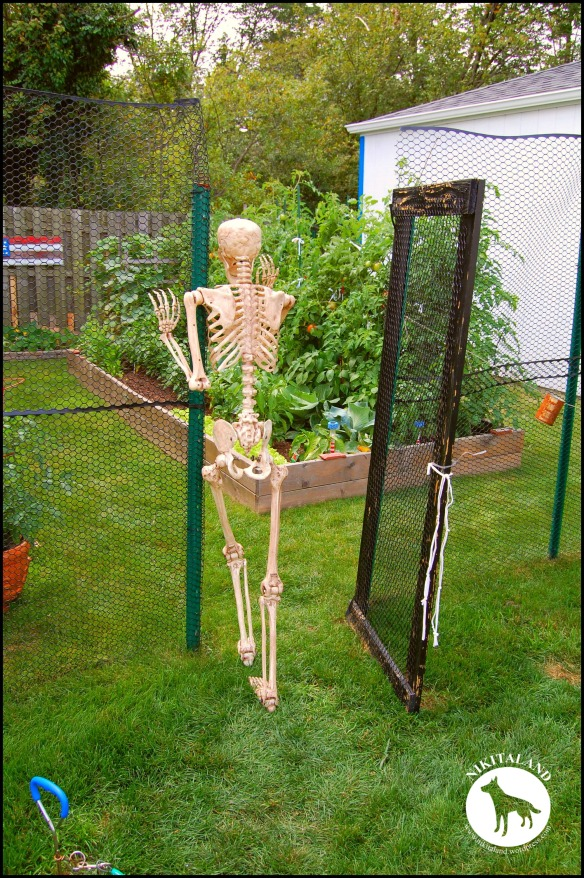 BeFunky_SKELETON WALKING INTO THE GARDEN a