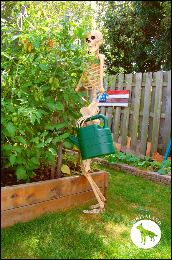 BeFunky_SKELETON WATERING THE GARDEN a