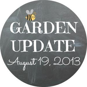 GARDEN UPDATE 8-19-13
