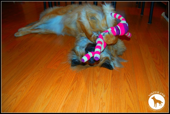 NIKITA AND SOCK MONKEY