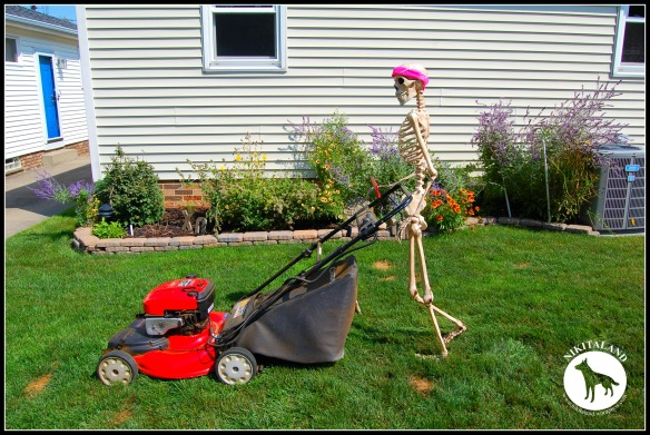 SKELETON MOWING THE LAWN