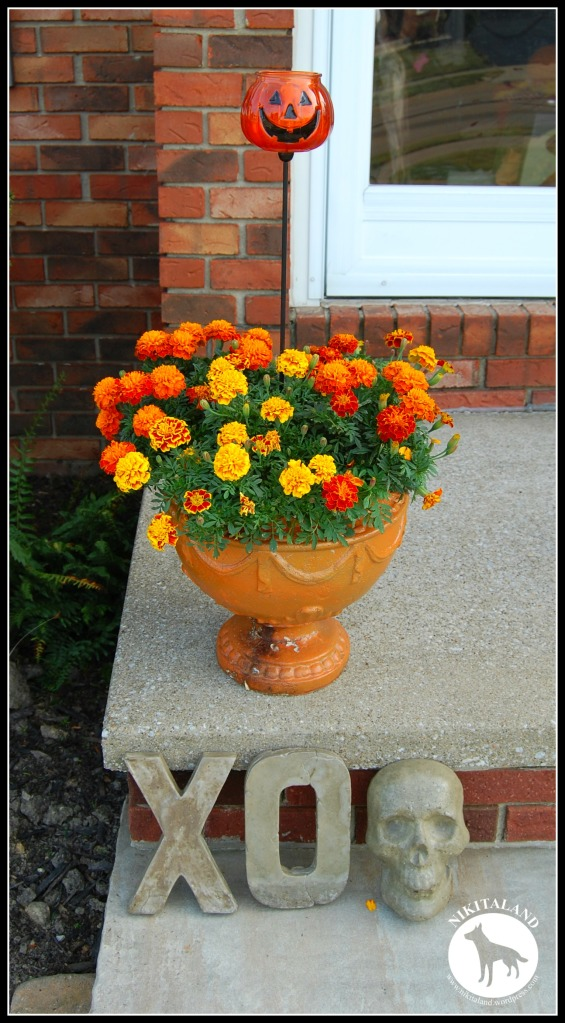 FRONT PORCH FLOWER POT