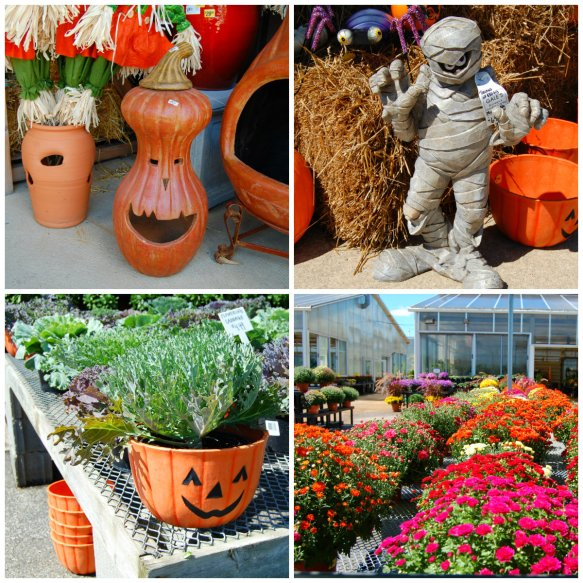 GARDEN CENTER COLLAGE