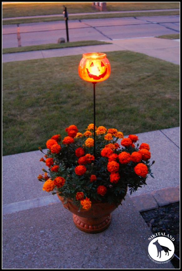 PUMPKIN LIGHT ON PORCH