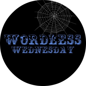 WORDLESS WEDNESDAY BLACK BOX JPG