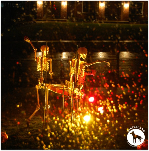 SKELETONS IN THE RAIN