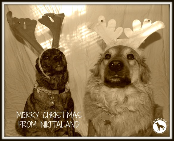 MERRY CHRISTMAS FROM NIKITALAND