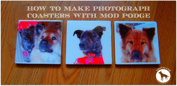 PHOTOGRAPH COASTERS