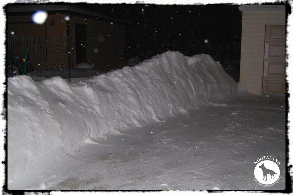SNOW PILE1 2-5-14