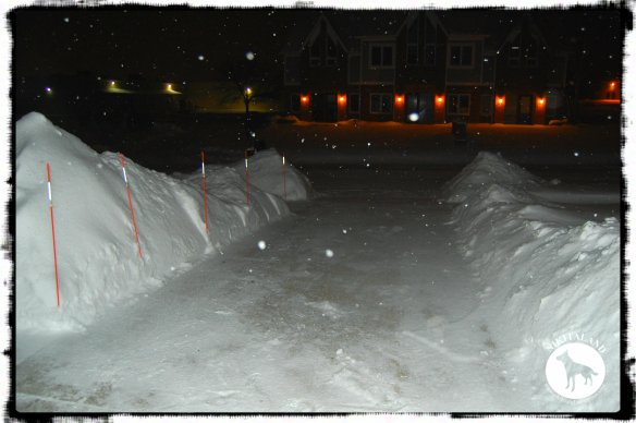 SNOW PILE2 2-5-14