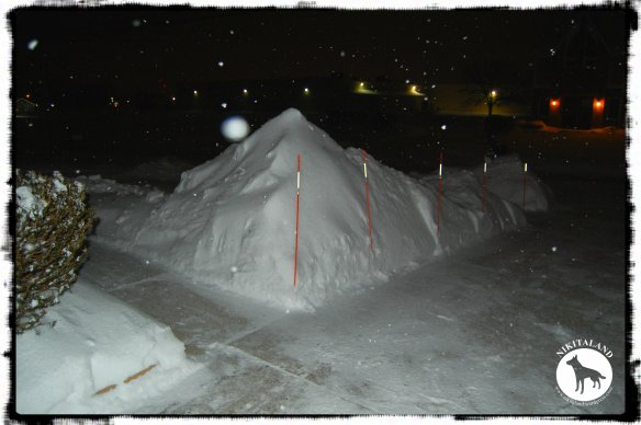 SNOW PILE3 2-5-14