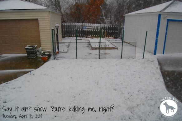 APRIL 15TH SNOW