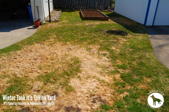 Yard Recovery1