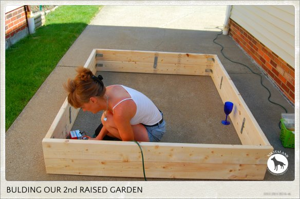 BUILDING 2ND RAISED GARDEN1