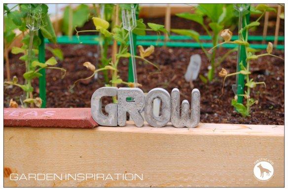 CEMENT GROW