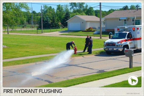 FIRE HYDRANT FLUSHING2 6-6-14