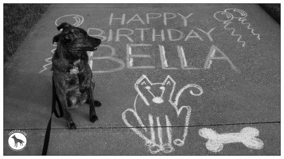 BELLA 2ND BIRTHDAY 6-29-14