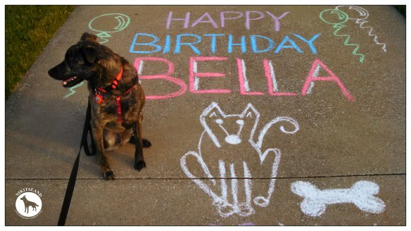BELLA 2ND BIRTHDAY CHALK SIGN