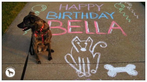 BELLA 2ND BIRTHDAY CHALK SIGN