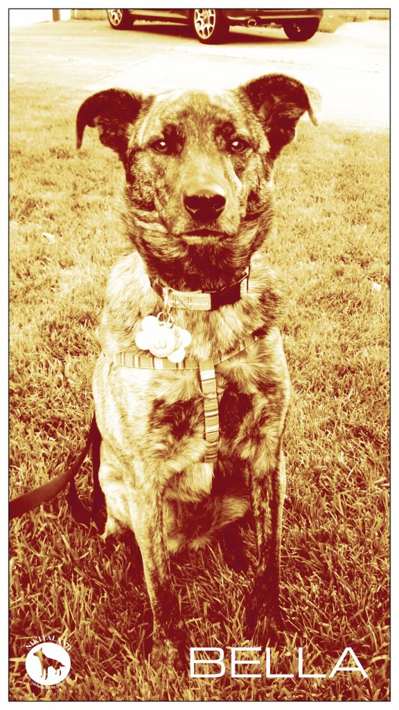 BELLA BIRTHDAY SEPIA 6-29-14