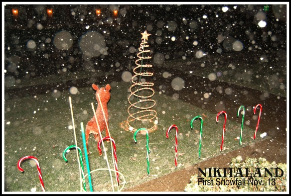 FIRST SNOWFALL 11-13-14