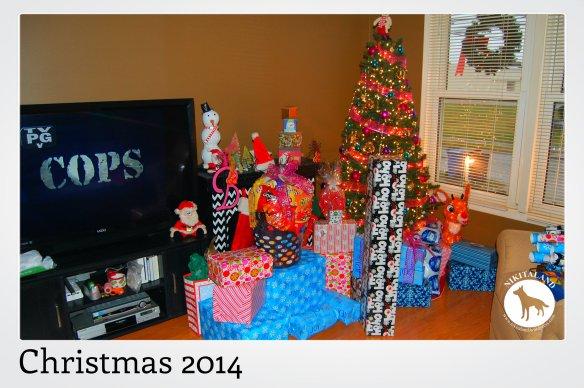 CHRISTMAS PRESENTS 2014