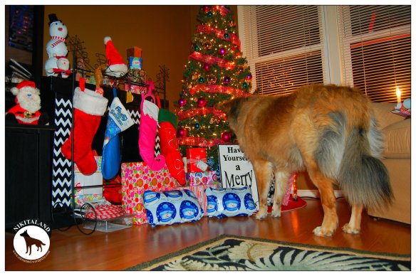 NIKITA WATCHING PRESENTS4