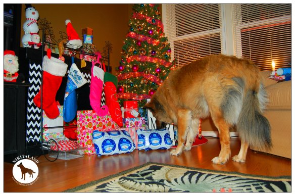 NIKITA WATCHING PRESENTS6