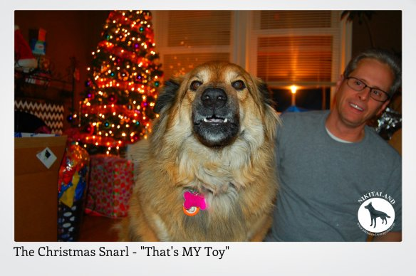 THE CHRISTMAS SNARL