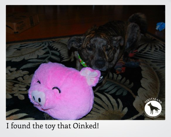 THE TOY THAT OINKED