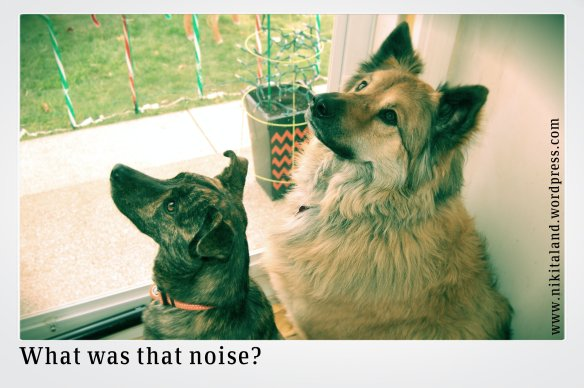 WHAT WAS THAT NOISE