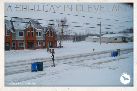 1-7-15 A COLD DAY IN CLEVELAND