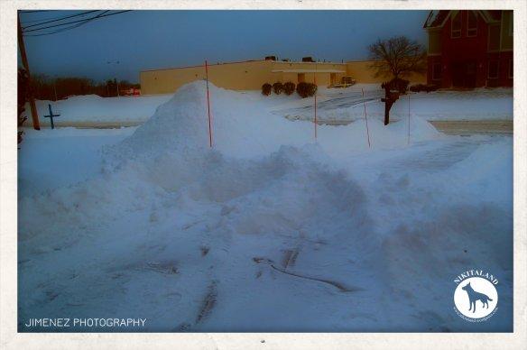 1-9-15 SNOWFALL