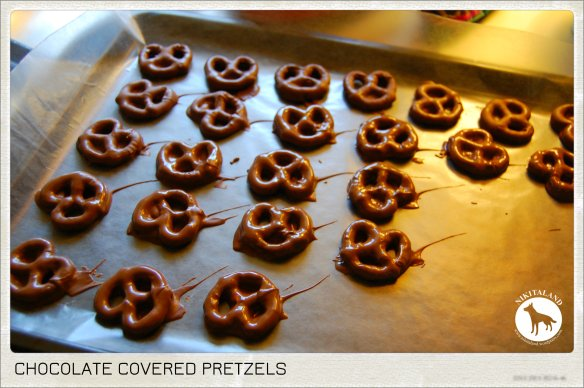 CHOCOLATE COVERED PRETZELS1