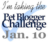 Pet Blogger Challenge Button