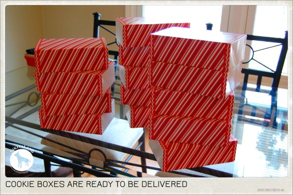 READY TO BE DELIVERED