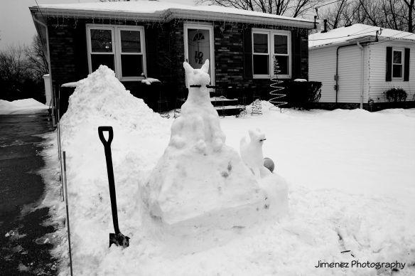 SNOWDOG3.jpg