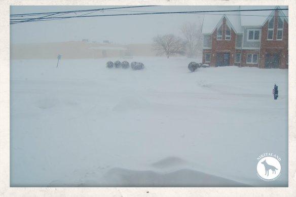 SNOW FEB UG