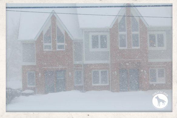 SNOW FEB